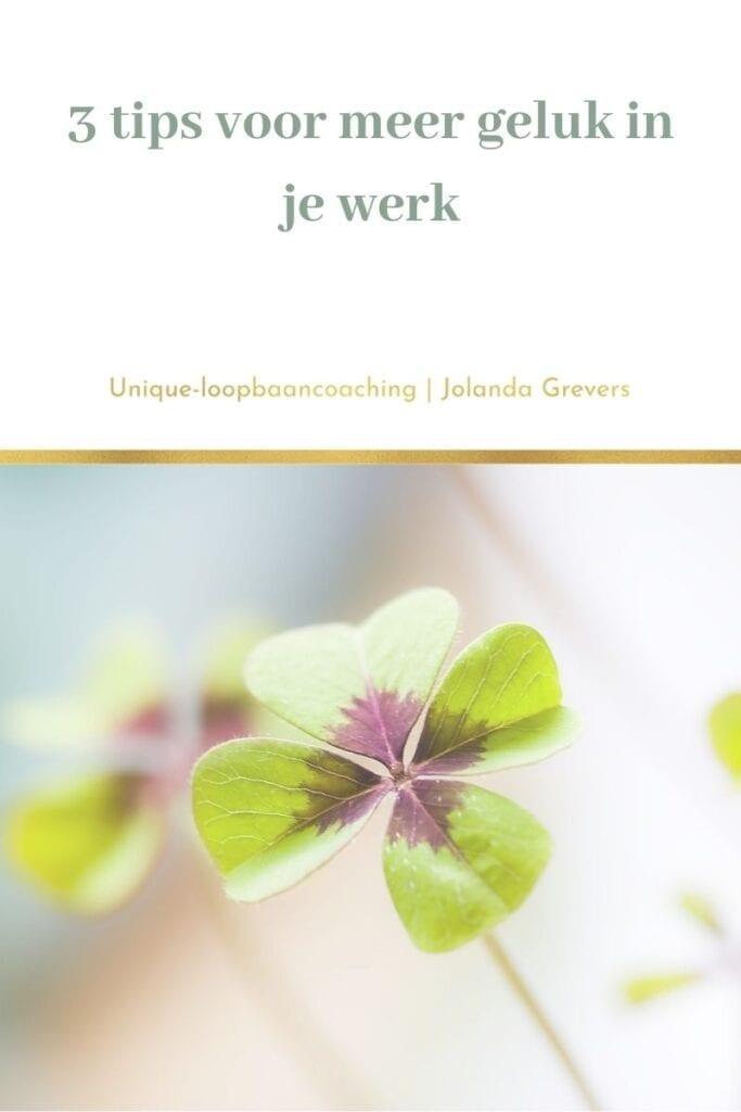 3 tips voor meer geluk in je werk | Uniqie-loopbaancoaching